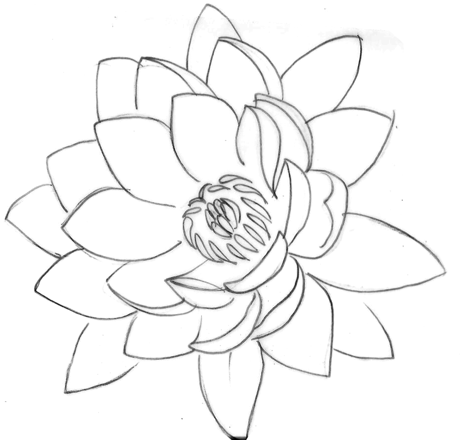 Cool Black Outline Lotus Flower Tattoo Stencil