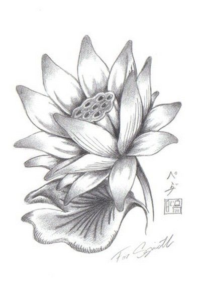 Cool Grey Ink Lotus Flower Tattoo Design