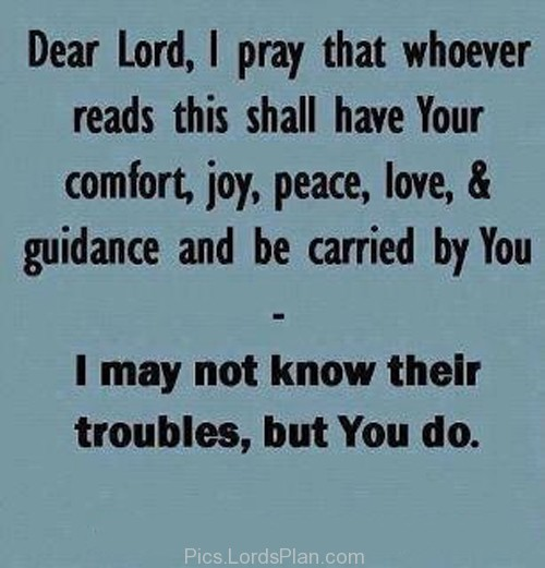 Dear Lord, I pray whoever reads this shall have Your comfort, joy, peace, love, & guidance, and be carried by You. I may not know their troubles, but You do