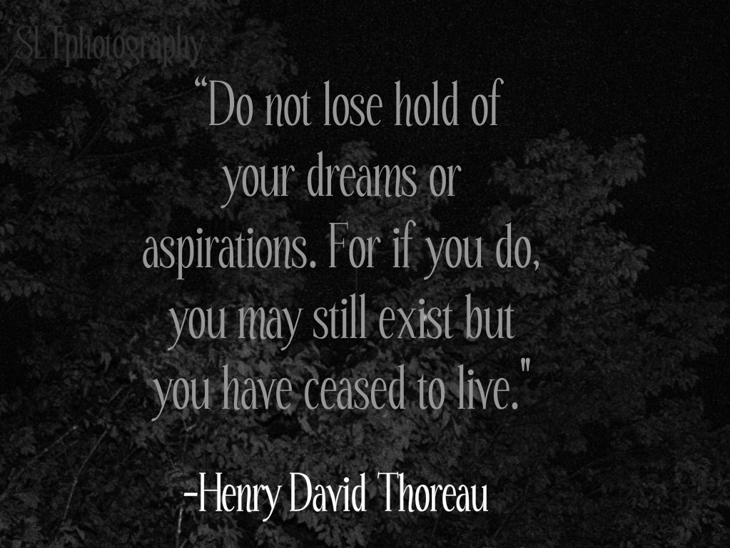 Do not lose hold of your dreams or aspirations. For if you do, you may still exist but you have ceased to live. Henry David Thoreau