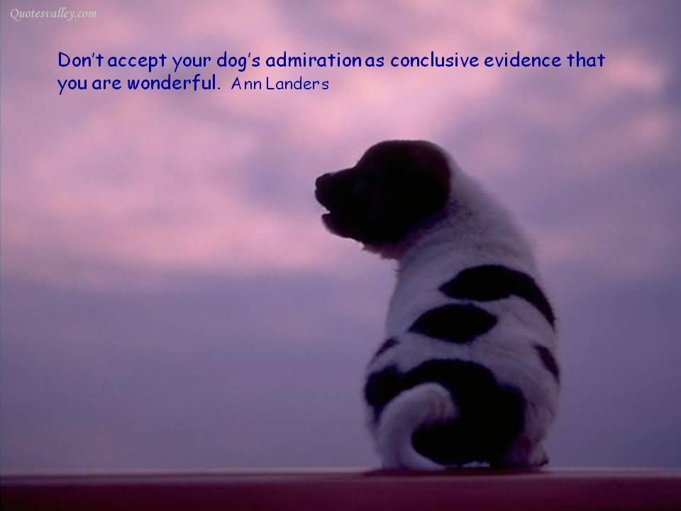Don't accept your dog's admiration as conclusive evidence that you are wonderful - Ann Landers