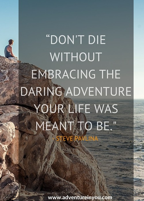 Don't die without embracing the daring adventure your life is meant to be - Steve Pavlina
