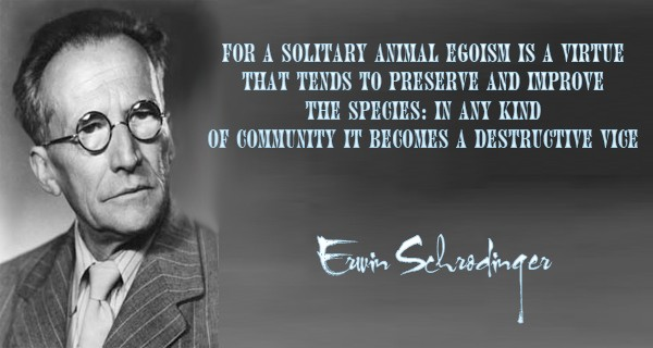 For a solitary animal egoism is a virtue that tends to preserve and improve the species in any kind of community it becomes a ... Erwin Schrodinger