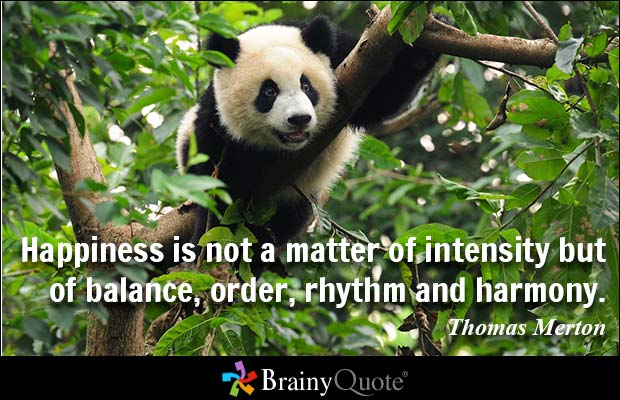 Happiness is not a matter of intensity but of balance, order, rhythm and harmony. Thomas Merton
