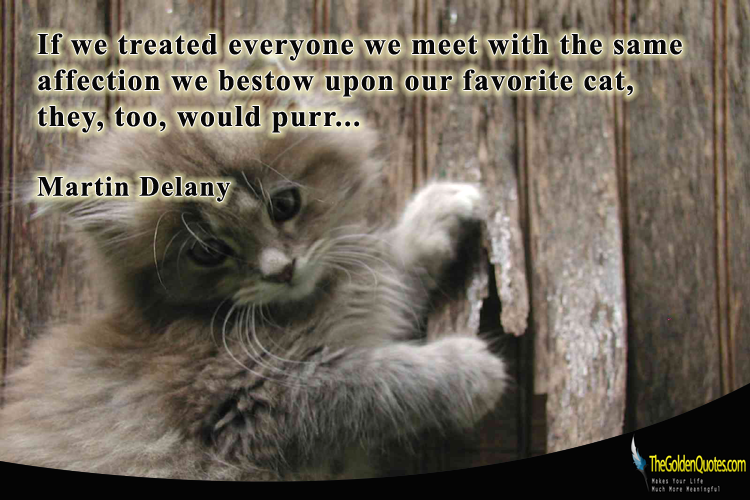If we treated everyone we meet with the same affection we bestow upon our favorite cat, they, too, would purr… Martin Delany