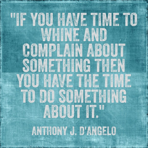 If you have time to whine and complain about something then you have the time to do something about it. Anthony J. D'Angelo