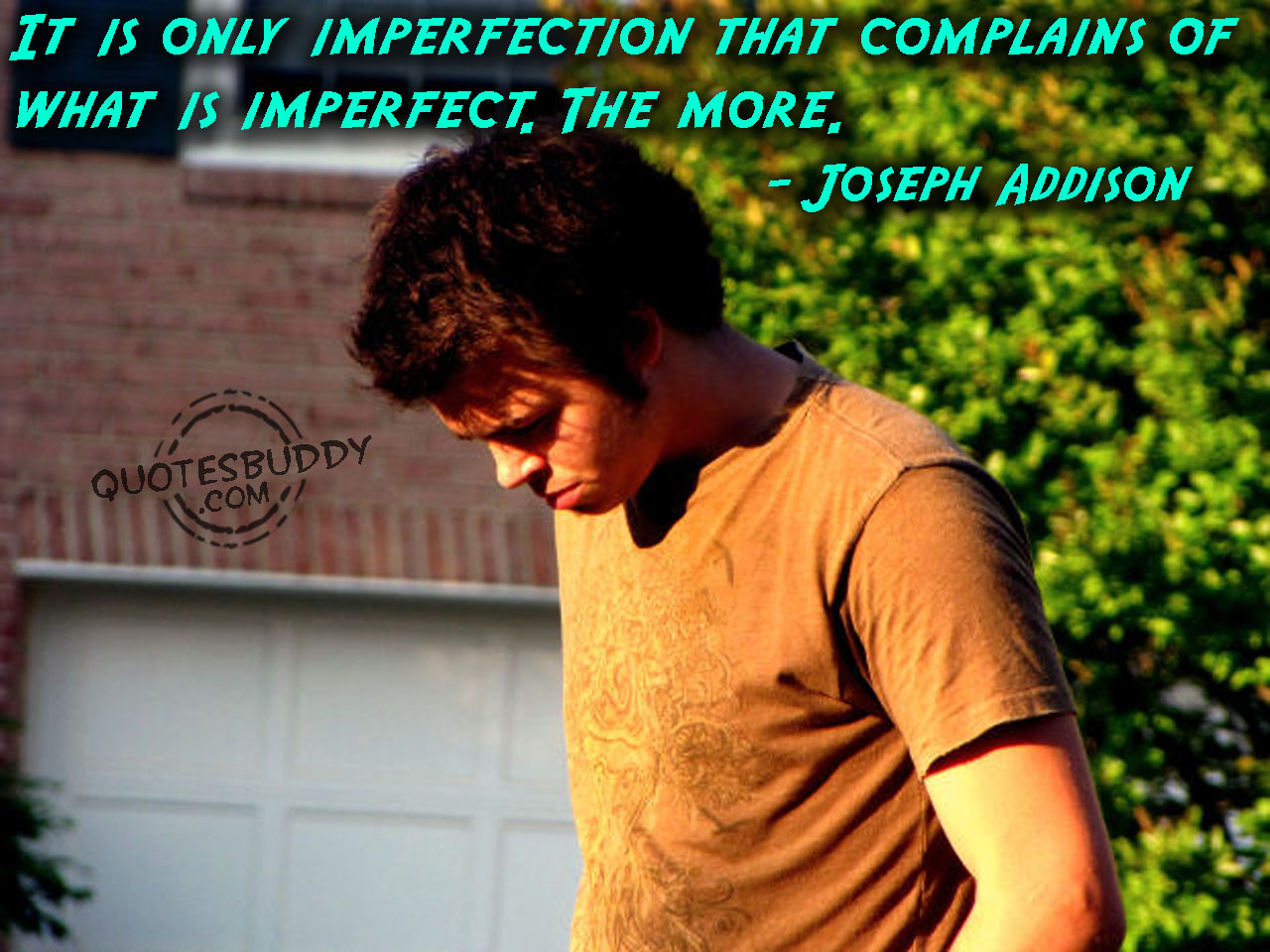 It is only imperfection that complains of what is imperfect. The more. Joseph Addison