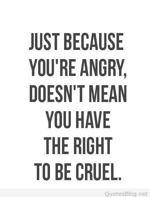Just because you're angry, doesn't mean you have the right to be cruel