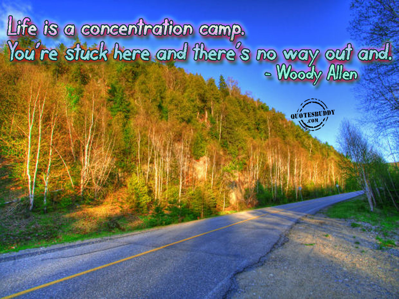 Life is a concentration camp. You're stuck here and there's no way out and. Woody Allen