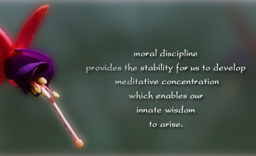 Moral discipline provides the stability for us to develop meditative concentration which enables our innate wisdom to arise