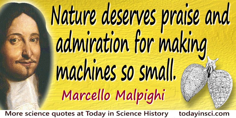 Nature deserves praise and admiration for making machines so small - Marcello Malpighi