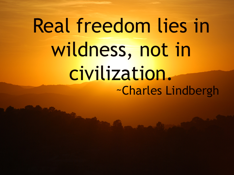 Real freedom lies in wildness, not in civilization. Charles Lindbergh