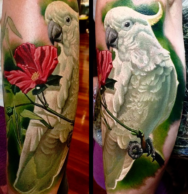 Realistic Parrot On Branch Tattoo On Left Leg Calf By Frederick Bain