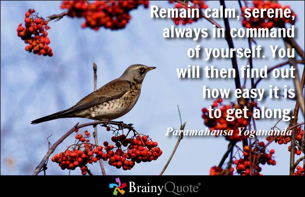 Remain calm, serene, always in command of yourself. You will then find out how easy it is to get along. Paramahansa Yogananda