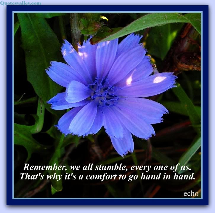 Remember, we all stumble, every one of us. That's why it's a comfort to go hand in hand