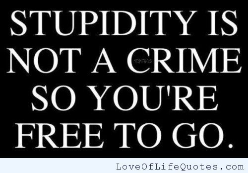 Stupidity is not a crime, so you are free to go