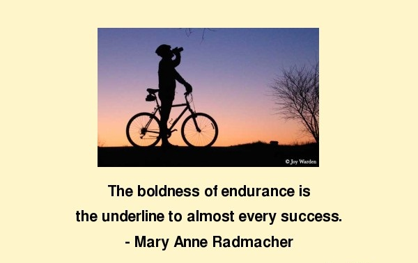 The boldness of endurance is the underline to almost every success.  Mary Anne Radmacher