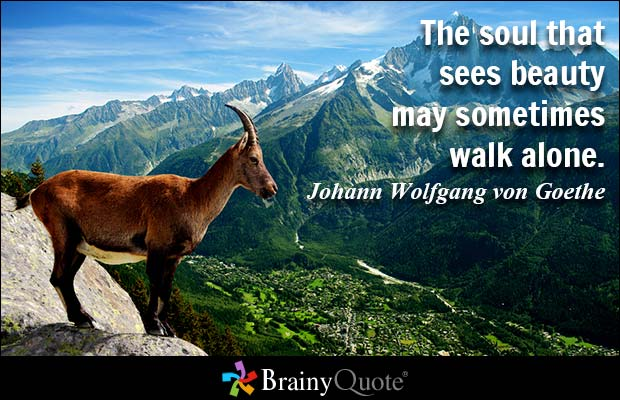 The soul that sees beauty may sometimes walk alone.  Johann Wolfgang von Goethe