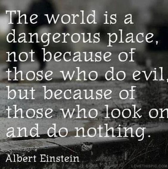 The world is a dangerous place, not because of those who do evil, but because of those who look on and do nothing. Albert Einstein