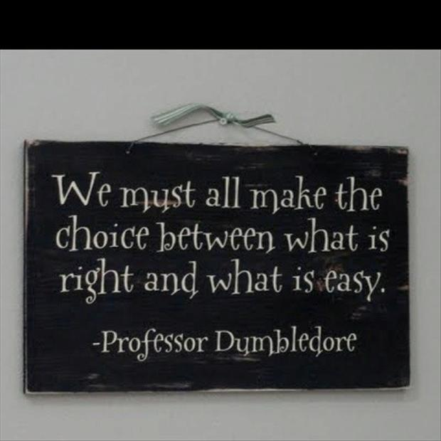 We Must All Make The Choice Between What Is Right And What Is Easy. Professor Dumbledore