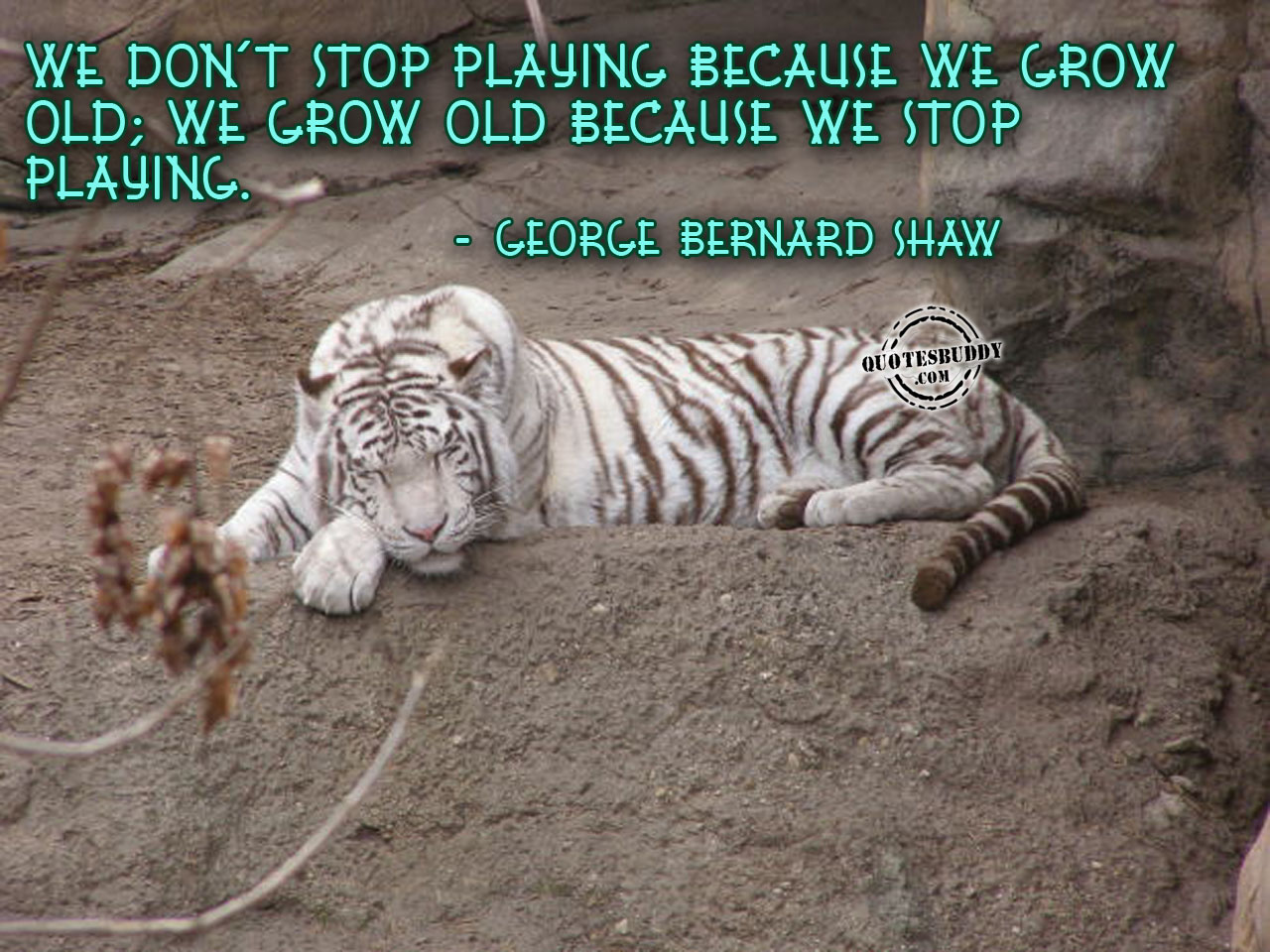 We don't stop playing because we grow old, we grow old because we stop playing - George Bernard Shaw