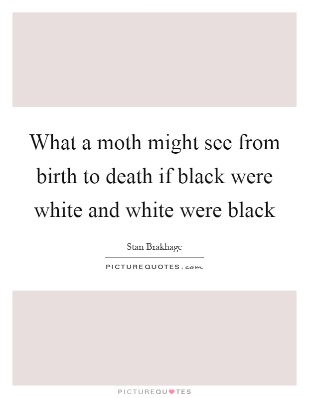 What a moth might see from birth to death if black were white and white were black. Stan Brakhage