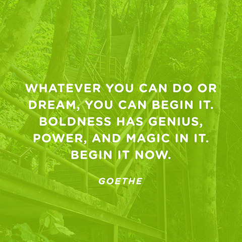 Whatever you can do or dream you can, begin it.Boldness has genius, power and magic in it. John Anster