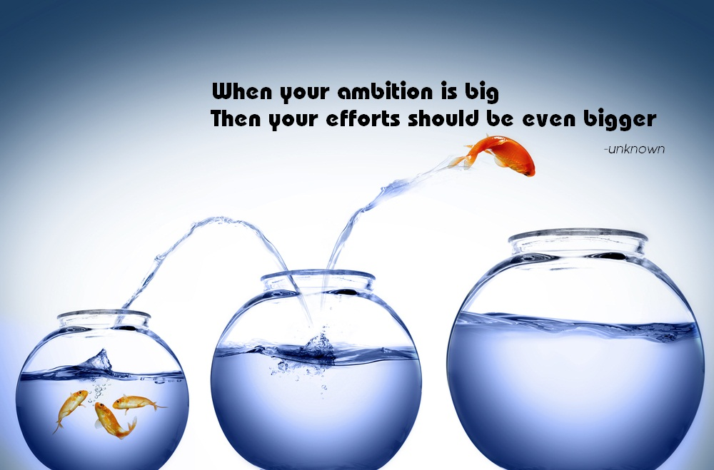 When your ambition is big then efforts should be ever bigger