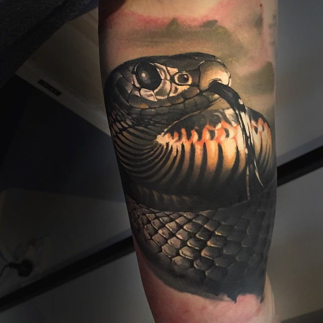 Wonderful Scary Snake Tattoo On Half Sleeve By Benjamin Laukis