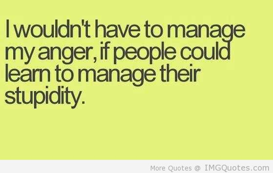 Wouldn't Have To Manage My Anger If People Could Learn To Manage Their Stupidity