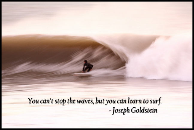 You can't stop the waves, but you can learn to surf. Joseph Goldstein