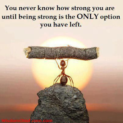 You never know how strong you are until being strong is the only option you have left