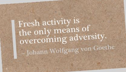 ctivity Is the Only Means of Overcoming Adversity. Johann Wolfgang Von