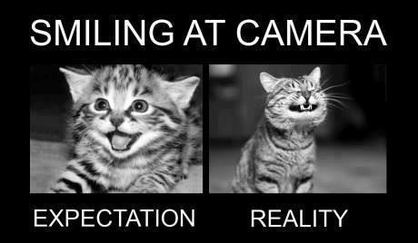 Expectations vs Reality - Memes comics jokes quotes pics pictures images photos comedy003