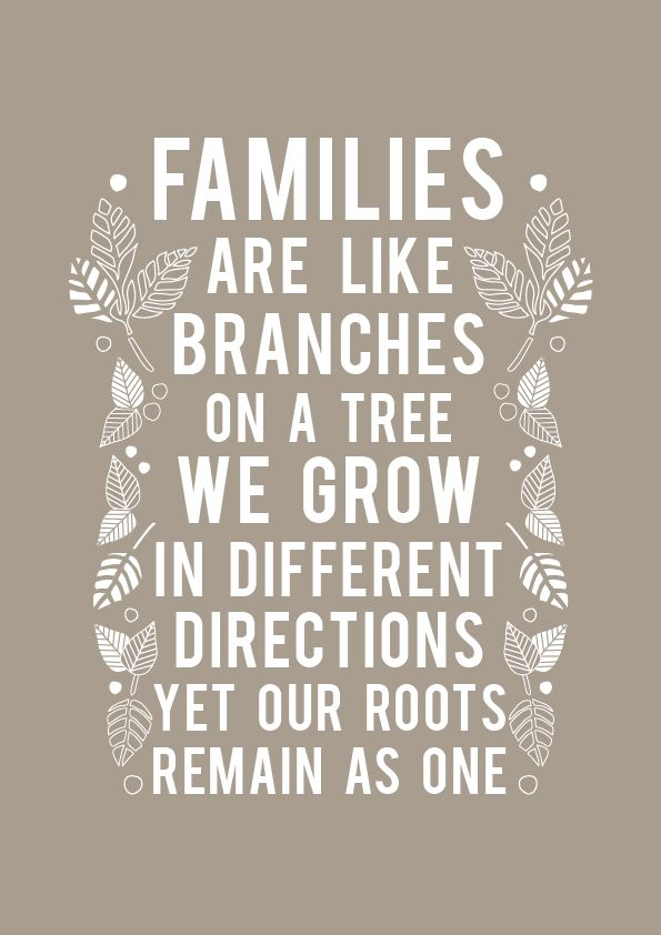 5$Family quotes