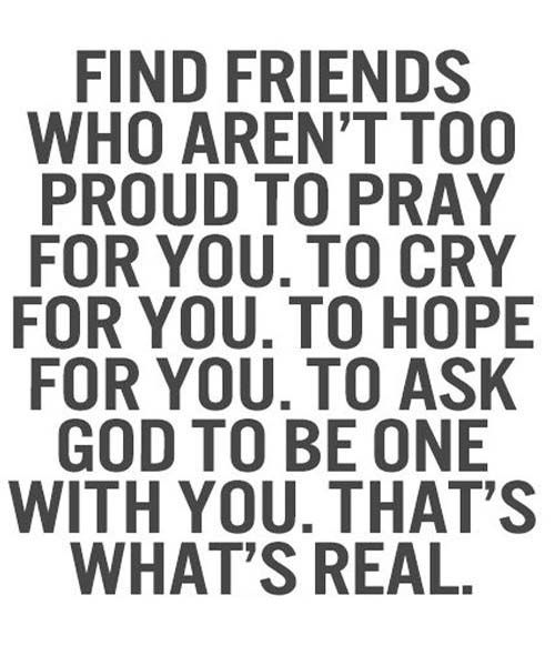 Amazing friendship quotes and proverbs - 5v5vc6v654c6546