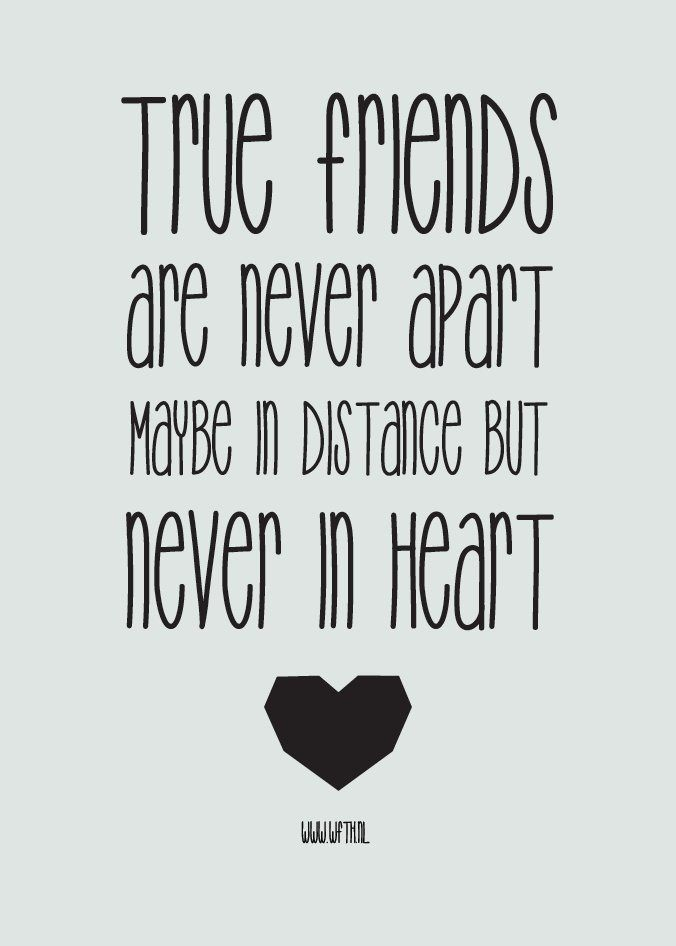 Amazing friendship quotes and proverbs - 6565v6464