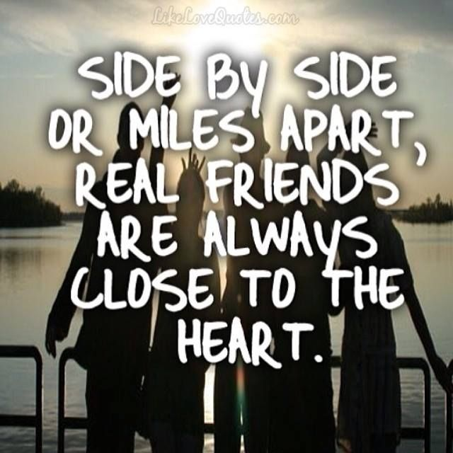 Amazing friendship quotes and proverbs - 66vbt6b65r