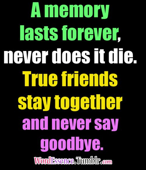 Fabulous friendship quotes and messages - 6v656c6