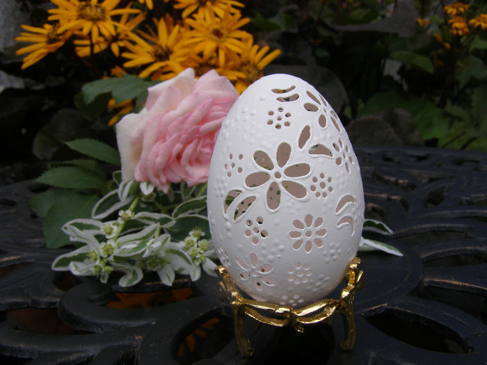 Frail piece of work on shell of egg