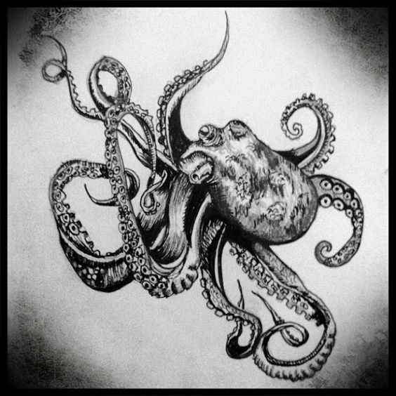 aggressive octopus tattoo concept and stensils