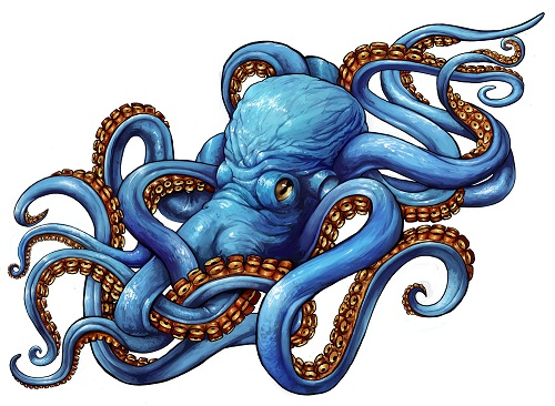 colorful octopus tattoo concept of stensil