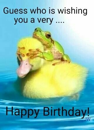 Funny Birthday Quotes | Funny Birthday Wishes And Photo Ideas